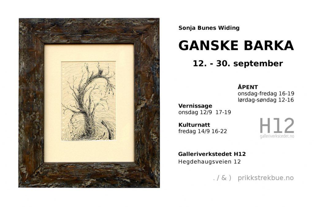 Sonja Bunes Utstilling Ganske Barka Galleriverkstedet H12 September 2018