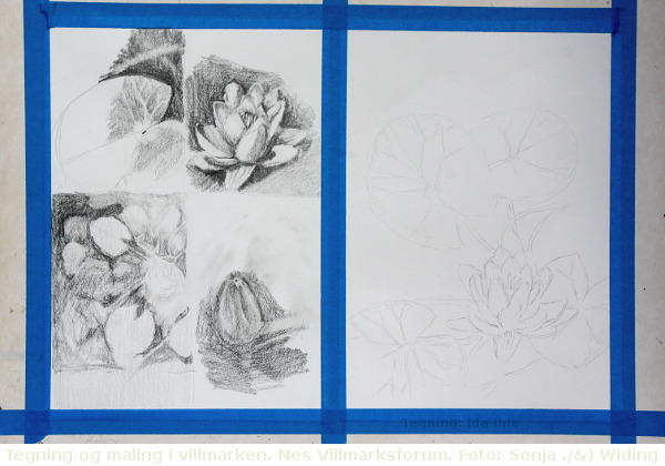 Tegning og maling på Nes Villmarksforum i Årnes
